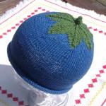 Blaubeer-Mütze