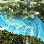 liliaceae1